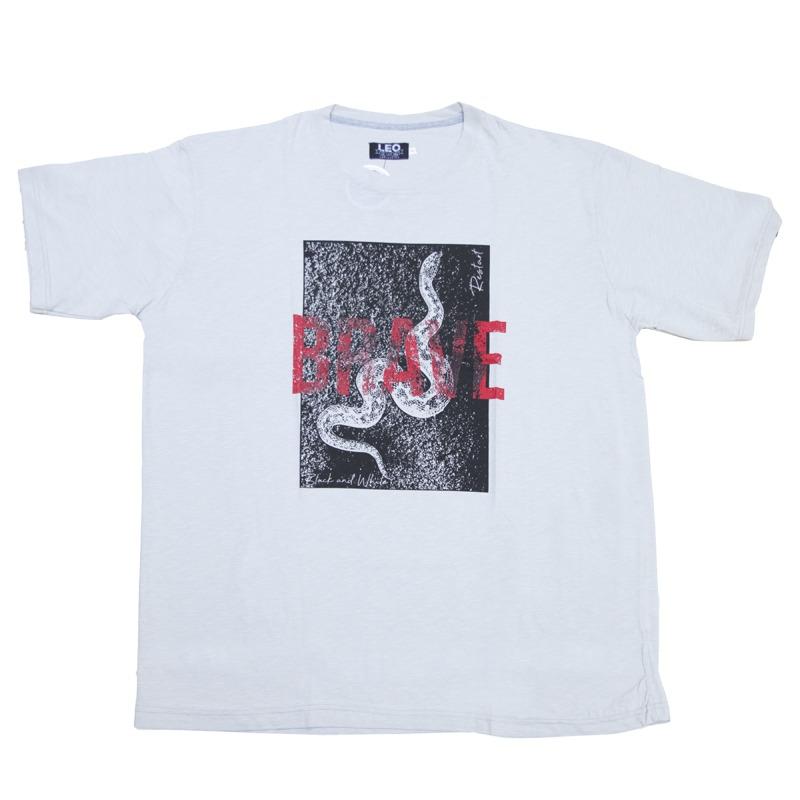ce1fd90c351e T-Shirt βαμβακερή φλάμα μεταξοτυπία
